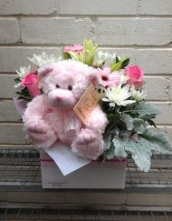 Baby Pink Cuddles